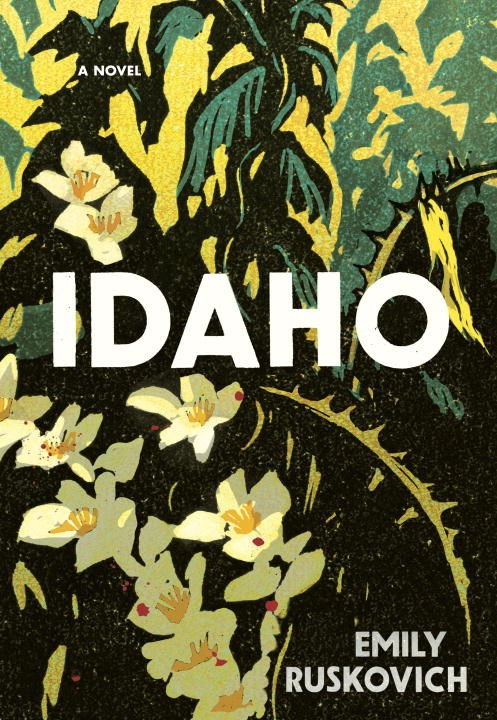 'Idaho' Reinvents the Mystery Novel with Wrenching, Lyrical Beauty