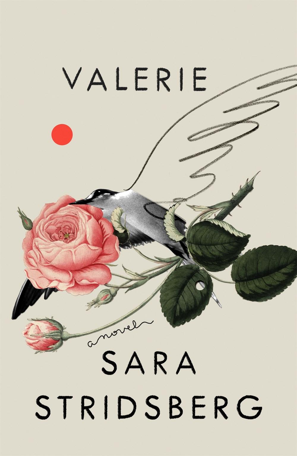 Картинки по запросу sara stridsberg valerie